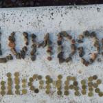 Slumdog Millionaire - Rediseño de afiches de película
